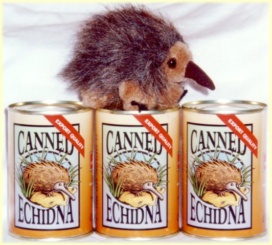 A perfect gag gift for Christmas - canned echidna toy