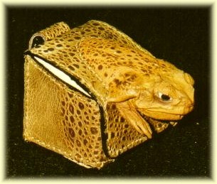 Exotic Christmas golf gift - cane toad leather golf ball case
