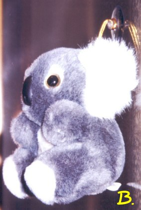 Koala toys with rope and suction on head